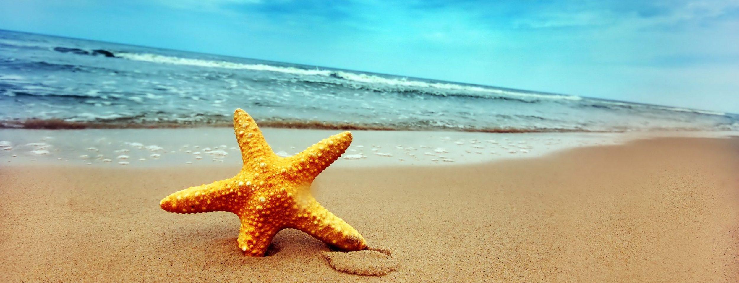 Beach Guadalmina